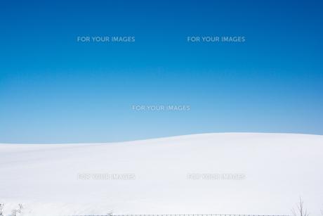 青空と真っ白な雪原の写真素材 [FYI00891178]