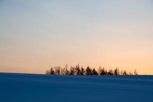 冬の夕暮れの空と雪原の写真素材 [FYI00891184]