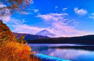 秋の西湖と富士山とボートの写真素材 [FYI00891477]