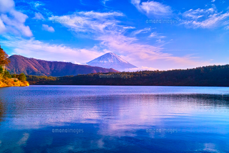 秋の西湖と富士山の写真素材 [FYI00891489]