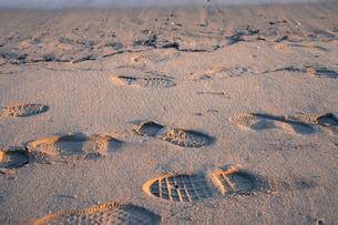 夕日に照らされる砂浜の足跡の写真素材 [FYI00891603]