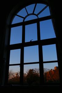 部屋の窓から見える夕空の写真素材 [FYI00891613]