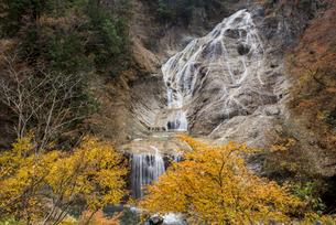 紅葉の姥ヶ滝の写真素材 [FYI00891736]