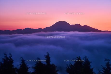 夜明け前の三瓶山の写真素材 [FYI00892267]