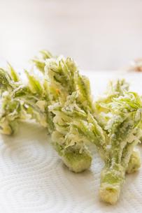 春の山菜たらの芽の天ぷらの写真素材 [FYI00892478]