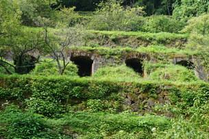 石見銀山の風景 清水谷製錬所跡の写真素材 [FYI00892740]