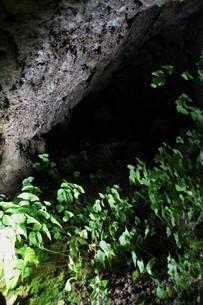 石見銀山の風景 龍源寺間歩(間歩内)の写真素材 [FYI00892753]