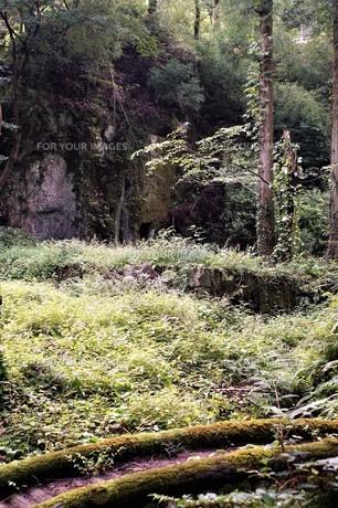 石見銀山の風景の写真素材 [FYI00892758]