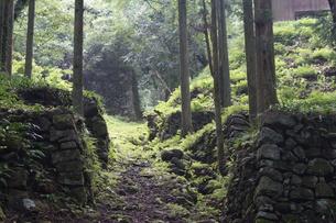 石見銀山の風景の写真素材 [FYI00892760]