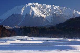 冬の早朝の大山山麓の写真素材 [FYI00892770]