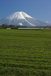小春日和の大山西麓の写真素材 [FYI00892772]