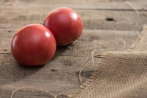 家庭菜園で穫れたトマトの写真素材 [FYI00893372]