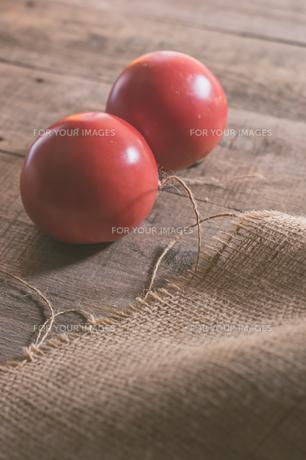 家庭菜園で穫れたトマトの写真素材 [FYI00893382]