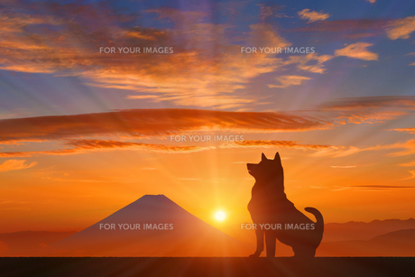 富士山と犬に朝日のイラスト素材 [FYI00893389]