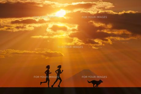 富士山と犬に朝日のイラスト素材 [FYI00893395]