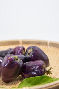 紫色のピーマンの写真素材 [FYI00893401]
