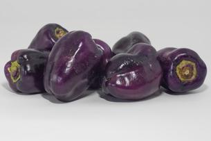 紫色のピーマンの写真素材 [FYI00893408]