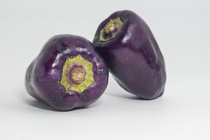 紫色のピーマンの写真素材 [FYI00893413]