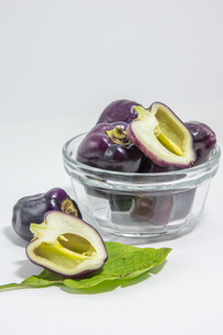 紫色のピーマンの写真素材 [FYI00893421]