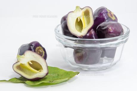紫色のピーマンの写真素材 [FYI00893422]