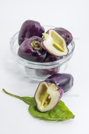 紫色のピーマンの写真素材 [FYI00893424]