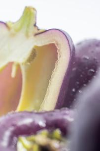 紫色のピーマンの写真素材 [FYI00893435]