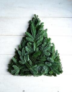 モミの葉のクリスマスツリーの写真素材 [FYI00893888]