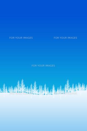 冬の林のイラスト素材 [FYI00894084]