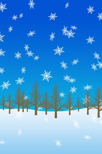 冬の林のイラスト素材 [FYI00894090]