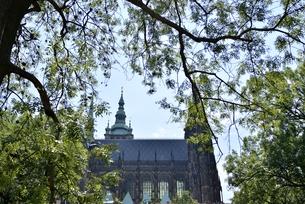 聖ヴィート大聖堂(チェコ・プラハ歴史地区)の写真素材 [FYI00894122]