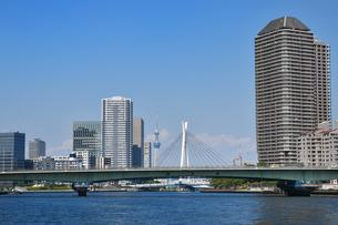隅田川に架かる清洲橋の写真素材 [FYI00894397]
