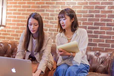パソコンでビジネス 若い女性の写真素材 [FYI00894429]