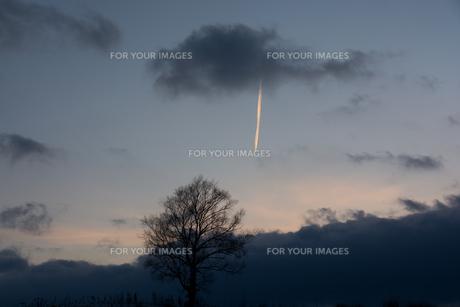 夕陽を反射する飛行機雲の写真素材 [FYI00894495]
