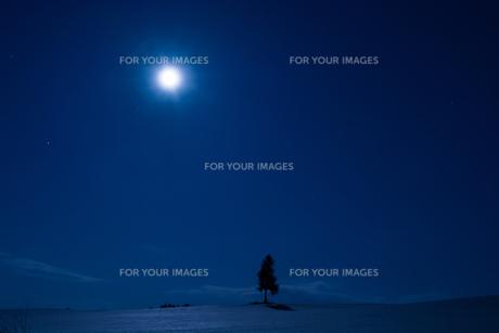 夜の雪原と満月の写真素材 [FYI00894496]