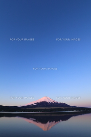富士山の写真素材 [FYI00894664]