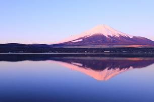 富士山の写真素材 [FYI00894708]