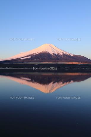 富士山の写真素材 [FYI00894715]