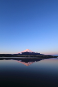富士山の写真素材 [FYI00894727]