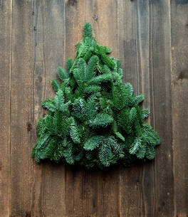 モミのクリスマスツリー 黒木材背景の写真素材 [FYI00894788]