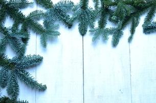 薄暗いモミの葉のフレームの写真素材 [FYI00894858]
