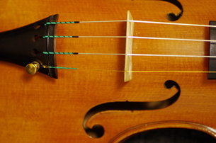 ヴァイオリンの写真素材 [FYI00894894]