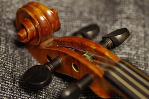 ヴァイオリンのヘッドの写真素材 [FYI00894907]