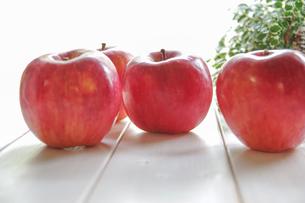 秋の味覚、林檎の写真素材 [FYI00894944]