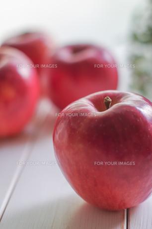 秋の味覚、林檎の写真素材 [FYI00894949]