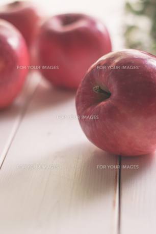 秋の味覚、林檎の写真素材 [FYI00894950]