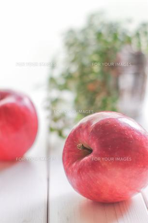 秋の味覚、林檎の写真素材 [FYI00894956]