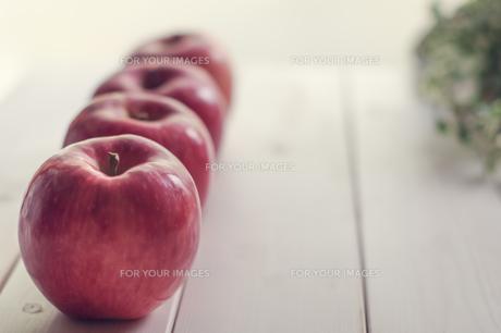 秋の味覚、林檎の写真素材 [FYI00894967]
