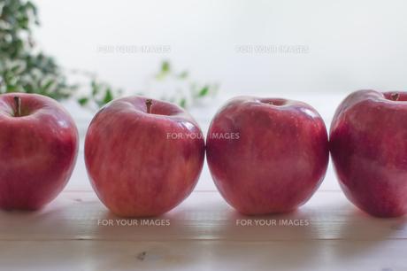 秋の味覚、林檎の写真素材 [FYI00894968]