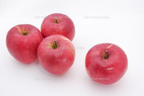 秋の味覚、林檎の写真素材 [FYI00894974]