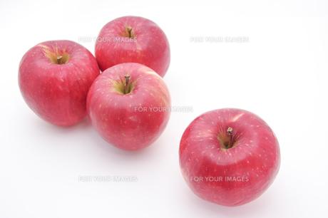 秋の味覚、林檎の写真素材 [FYI00894976]